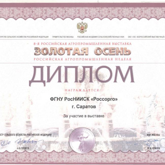 Диплом Золотая Осень 2006