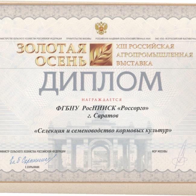 Диплом Золотая Осень 2011