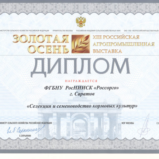 Диплом Золотая осень 2008