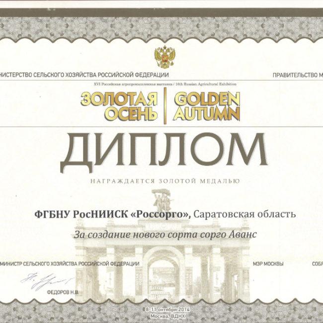 Диплом Золотая осень 2014