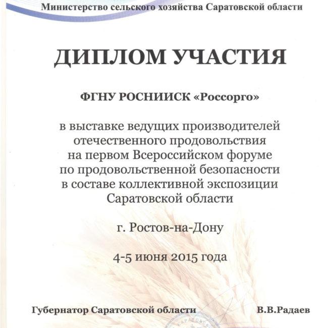 Диплом участия 2015 нижегородская обл