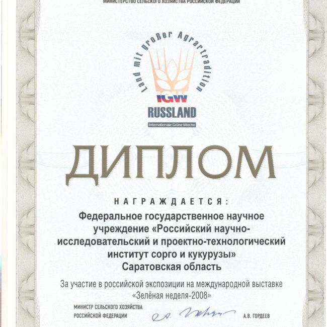 Диплом 2008 ЗО за достижение