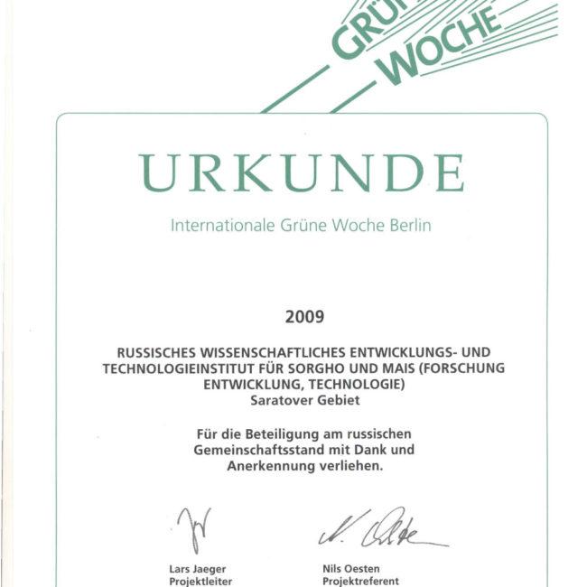 Диплом 2009 Золотая Осень
