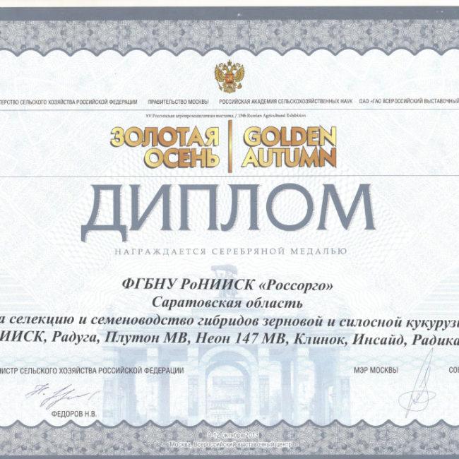 Диплом 2013 Золотая Осень
