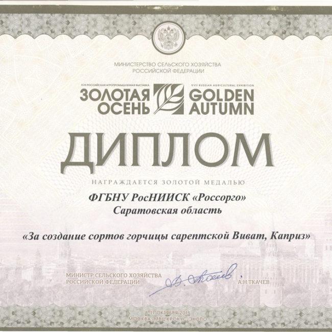 Диплом 2015 Золотая Осень
