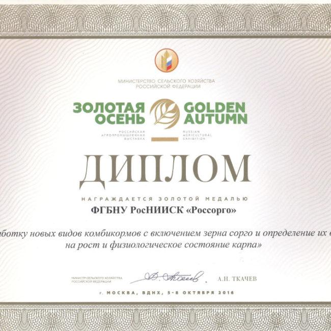 Диплом 2016 ЗО создание сортов зерновое сорго