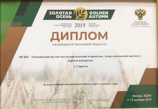 За возделывание высокопродуктивного сорта зернового сорго
