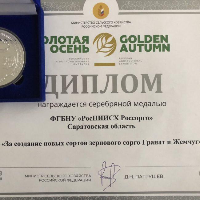 Золотая осень 2018