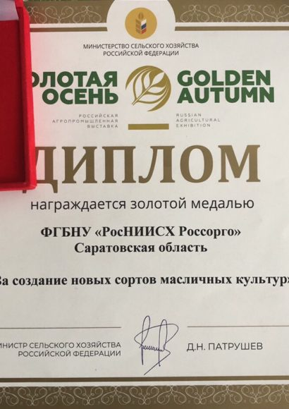 Золотая осень - 2018