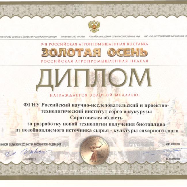 Диплом Золотая осень 2007